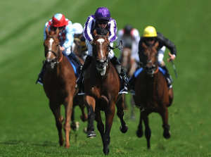 Epsom Derby Stakes Free Bets 2015
